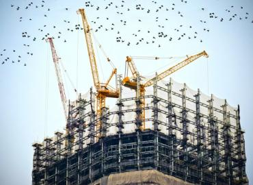 birds flying away from a rooftop construction site